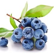 Power of the Blueberry